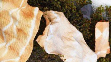 草木染めで布ナプキン作り